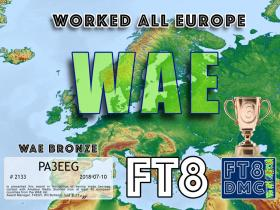 ft8dmc_019-01_WAE-BRONZE_large